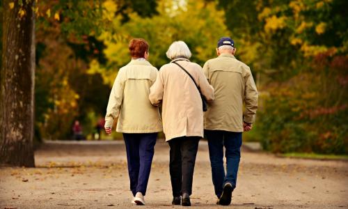 Для тех, кто старше 60 лет, вводят новую льготу