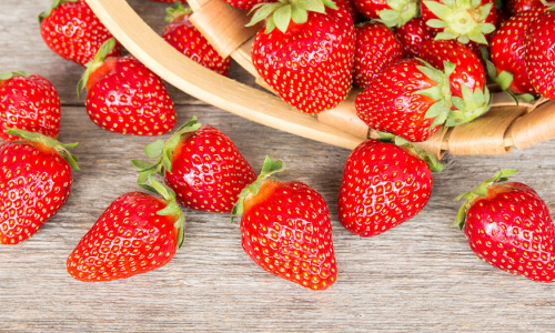 Натуральная прикормка: как вырастить хороший урожай клубники
