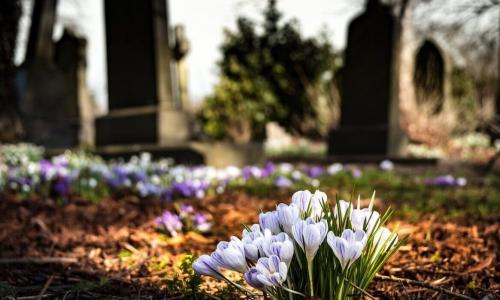 Почему на кладбище нельзя смотреть на чужие могилы